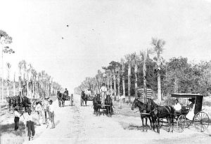 Seabreeze, Florida - Early picture of Ocean Blvd. (Seabreeze Blvd.) 1893