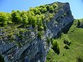 Sedo del Toyu-Parque Natural de Ponga-Asturias-Spain.jpg