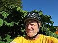 Selfi near that rhubarb (15324286391).jpg