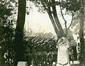 Shanghai Volunteer Corps, Memorial Day, 1933 (7203520648).jpg