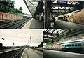 Shrewsbury station 2010 1.JPG