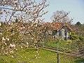 Siedlung Maeckeritzwiesen (Maeckeritz Meadows Estate) - geo.hlipp.de - 35129.jpg