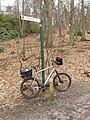 Signpost and bike, Swinley Forest - geograph.org.uk - 729318.jpg