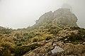 Silhueta entre Neblinas.JPG