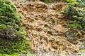 Sithonia, Greece - panoramio (5).jpg