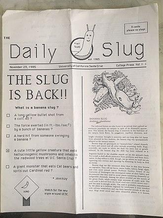 UC Santa Cruz Banana Slugs - Image: Slug 1