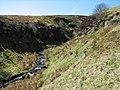 Small gorge - geograph.org.uk - 164873.jpg