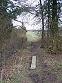 Small plank footbridge on Stour Valley Walk - geograph.org.uk - 1188983.jpg