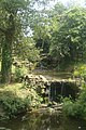 Small waterfall, Haslam Park, Preston - geograph.org.uk - 817757.jpg