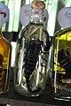 Snake whisky I've seen, but scorpion whisky is relatively rare (14604530222).jpg