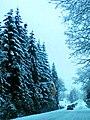 Sneh Podbanské 17 Slovensko9.jpg