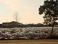 Snow Day in Juybar.jpg