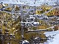 Snowy reflections (54cc464b2ef44f98a7166e55f1cb11e3).JPG