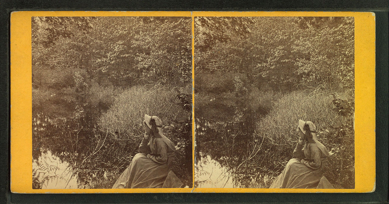 Solitude, by John B. Heywood.jpg