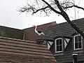 Solvang Stork on Roof.JPG