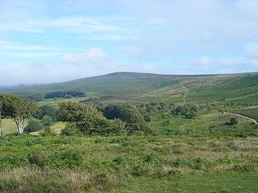 Somerset 2008036.jpg