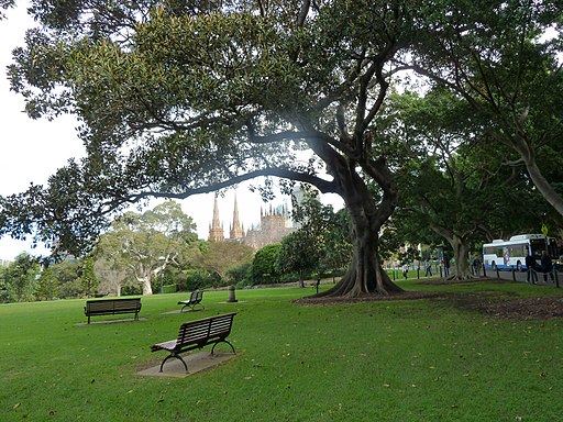 St Mary's From The Domain. - panoramio