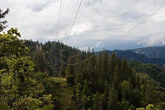 Stanislaus National Forest - A second of Stanislaus National Forest along CA-120.