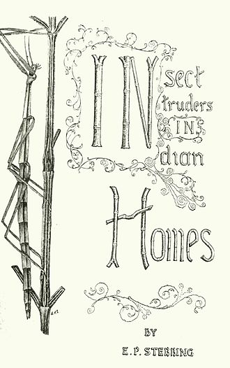 Edward Percy Stebbing - Book cover drawn by Stebbing