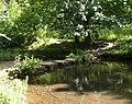 Stepping Stones, Chellow Dean, Heaton - Allerton, Bradford - geograph.org.uk - 490011.jpg