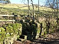 Steps built into drystone wall - geograph.org.uk - 704645.jpg