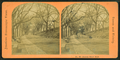 Stereoscopic views of streets in Boston, Massachusetts, from Robert N. Dennis collection of stereoscopic views.png