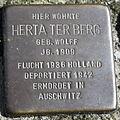Stolperstein Delmenhorst - Herta ter Berg (1909).JPG