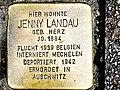 Stolperstein Landau Jenny sonnenwall 43 duisburg-Altstadt.jpg