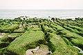 Stone trench of Laomei, Taiwan; April 2016 (06).jpg