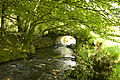 Stream and old bridge on Exmoor, Devon (2545896104).jpg