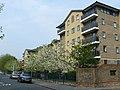 Street Scene, Tavistock Road, Croydon - geograph.org.uk - 1253896.jpg