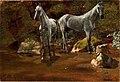 Study of Wild Horses-Albert Bierstadt.jpg