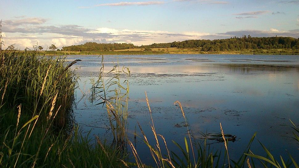 Summers eve at Årslev Engsø