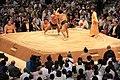 Sumo tournament (15713511605).jpg