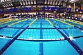 Swimming pool with lane ropes in place.jpg