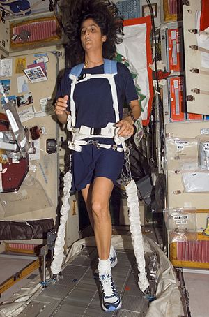 Locomotion in space - Astronaut Sunita L. Williams, Expedition 14 flight engineer, equipped with a bungee harness, exercises on the Treadmill Vibration Isolation System (TVIS) in the Zvezda Service Module of the International Space Station.