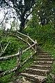 Taiwan 2009 HuaLien Carp Mountain Trail FRD 5348.jpg