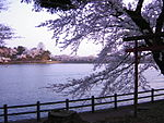 Takamatsu Pond in the cherry blossom season.jpg