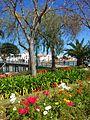 Tavira (Portugal) (17578413938).jpg