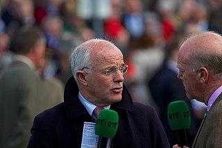 Ted Walsh Irish jockey and trainer