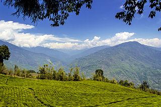 Temi Tea Garden human settlement in India