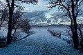 Texel - Kwekerijweg - View NW in Winter II.jpg