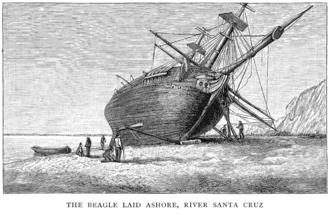 Die HMS Beagle  330px-TheBeagleLaidAshore