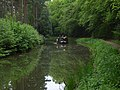 The Basingstoke Canal, near Dogmersfield - geograph.org.uk - 170403.jpg