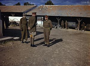 Kenneth Anderson (British Army officer) - Lieutenant-General K. A. N. Anderson (right) on a visit to 78th Infantry Division's HQ in Tunisia, January 1943. Brigadier C. B. McNabb is on the left, with Major-General V. Evelegh, GOC 78th Division, on the right.