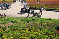 The Flower Fields at Carlsbad Ranch 71 2014-04-28.jpg