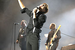 The Hives mg 6444.jpg