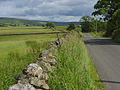 The Leadgate to Garrigill road - geograph.org.uk - 902606.jpg