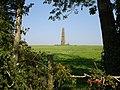 The Obelisk ( Brightling Needle) - geograph.org.uk - 64068.jpg