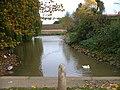 The Pond at Hall Farm - geograph.org.uk - 276212.jpg